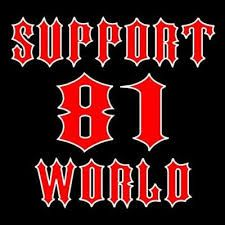 Image result for SUPPORT 81