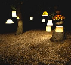 Hanging Lamps on tree.
