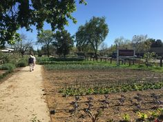 Farmstead at Long Meadow Ranch Winery Saint Helena, CA