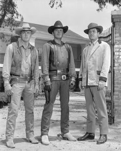 Lee Majors , Peter Breck & Richard Long were the Barkley Brothers on The Big Valley Great Tv Shows, Old Tv Shows, Movies And Tv Shows, Richard Long, Tv Westerns, Classic Tv, Classic Films, 1960s Tv Shows, Gugu