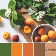 Excelente combinación de tonos y colores en la paleta número 14, comenzando por los dos estilos de colores en tono naranja.