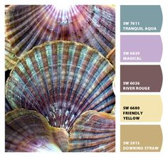 Beautiful purples and blues straight from nature #paint #décor @Margaret Martinez Martinez Martinez Pharr  this seems like perfect pallet for living room (=