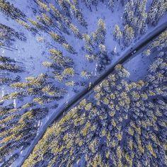 #praded #jeseniky #hory #cz #dji #djiphantom3 #winter #zima #trees