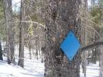Spruce Creek Trail Marker - 02-25-2006