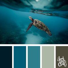 Coastal Color Palettes, Coastal Colors, Ocean Colors, Teal Color Schemes, Colour Pallette, Ocean Color Palette, Coral Color, Website Design, Theme Color