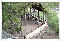 LIVING LIFE TO THE MAX - Our recent visit to the Kruger National Park: Olifants camp