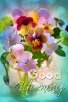 Good Morning Wishes Gif, Good Morning Video Songs, Good Morning Gift, Good Day Wishes, Good Morning Saturday, Good Night Gif, Good Morning Coffee, Good Morning Picture, Good Morning Greetings