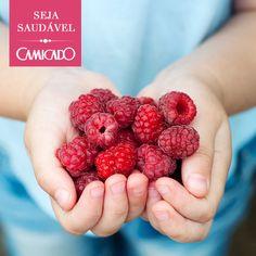 Camicado; health; fruits