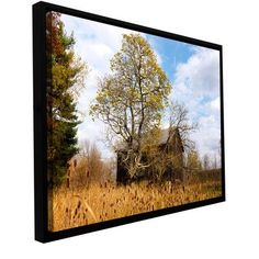 ArtWall 'CVNP Barn' by Cody York Framed Photographic Print on Wrapped Canvas Size:
