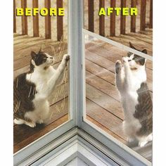 Claws Off Tm Screen Door Protector Save Screens From