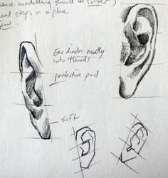 how to draw an ear from the front