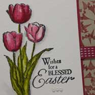 SU stamp sets for both the foreground and the background.       the Petal Parade stamp set is the one stamp she used to make that brocade looking background in Raspberry Ripple on Crumb Cake.   Watercolor Easter Card