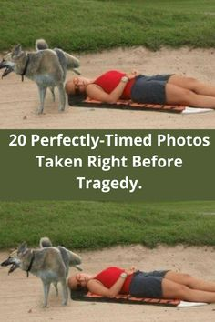 Seldom it happens that we find a photograph which encapsulates the exact time before tragedy hits. And when we find them, they become treasured materials. They convey so many emotions that it can be extremely overwhelming to even encounter them. Today, we are going to take a look at 20 such photographs. So, here's presenting 20 perfectly-timed photos taken right before tragedy. #Internet #viral #Trending #funny #hilarious #humor #omg #bizarre #weird #wtf Perfectly Timed Photos, Hilarious, Funny, Popular Pins, New Pictures, Haha, All In One, Weird, Photographs