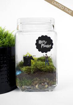 Harry Planter // Harry + Voldemort // harry potter moss terrarium