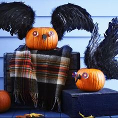 Decorating for Halloween and fall usually involves yielding a pointy object and carving into a pumpkin, but maybe you should try something effortless like these no-carve pumpkin decorating ideas. Pumpkin Ideas, A Pumpkin, Pumpkin Carving, Easy Halloween Crafts, Up Halloween, No Carve Pumpkin Decorating, Diy Decorating, Birds, Bird