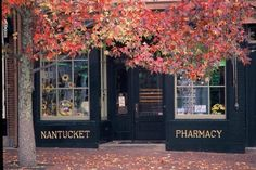 Nantucket, MA: Main Street Fall Foliage - my childhood was spent on this island. I miss it!