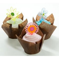 Brown Cupcake Liners - Muffin Cup Folded Brown