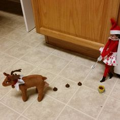 Elf on the Shelf | reindeer poop | reindeer | chores | poop | taking care of pets | elf | Christmas | elf on the shelf ideas