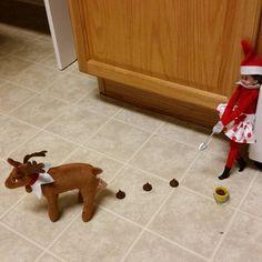 Elf on the Shelf | reindeer poop | reindeer | chores | poop | taking care of pets | elf | Christmas | elf on the shelf ideas