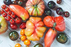 10 Tips For Growing Your Own Food In Your Garden
