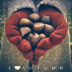 I ❤ Autumn