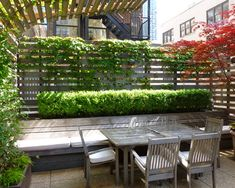 Wood slat wall, Potted Plants As Living Screen Design, Pictures, Remodel, Decor and Ideas - page 13