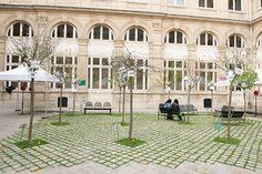Foto: Un nouveau verger cour de la mairie du IV - Crédit: François Grunberg