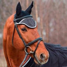 2019 New Multicolor Equestrian Supplies Horse Earmuffs Adult Horse Anti-mosquito Fly Protection Face Protection Cover Dressage – Sports & Entertainment Equestrian Supplies, Cycling Mask, Horse Ears, Anti Mosquito, Dressage Horses, Bones And Muscles, Earmuffs, Horse Riding, Sports Equipment