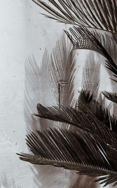 Aesthetic Backgrounds, Aesthetic Iphone Wallpaper, Aesthetic Wallpapers, Girl Wallpaper, Galaxy Wallpaper, Wallpaper Backgrounds, Best Nature Wallpapers, Pretty Wallpapers, Lock Screen Backgrounds