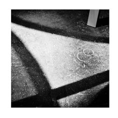 Black & White #11