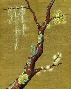 """""""Lichen Garden"""" by Kate Halpin - A delightful garden of lichens on a tree branch. Painted on real birch wood that is stained a bright olive green. 16"""" x 20"""". KateHalpinArt.com"""