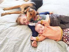 Toddle Naps With Puppy Theo And Beau Instagram Theo Beau - Theo beau cutest animal human pairing ever