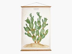 I need this!! cactus - Opuntia jamaicensis - Print large / by arminho