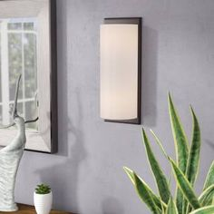 Affordable Places Alina Wall Sconce By Ivy Bronx Led Wall Lamp, Wall Sconce Lighting, Wall Sconces, Dimmable Light Bulbs, Incandescent Bulbs, Led Flush Mount, Living Room Lighting, Modern Rustic Interiors, Fabric Shades