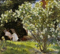 Marie reading in a rose garden Peder Severin Krøyer, 1891 #danish
