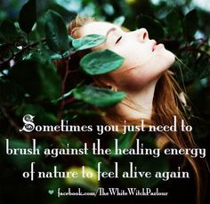 Bringing Magick to the Mundane! 🌿Sometimes a little love from mother nature is all you need! Mother Earth, Mother Nature, Pantheism, Reiki Healer, Encouragement, Nature Quotes, Forest Quotes, Way Of Life, Magick