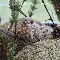¡La #Navidad también es natural! Dale un toque innovador a tu decoración; en #Conceptual te enseñamos cómo. Te esperamos en #IndianaMall local 164 o visítanos en www.conceptual.com.co
