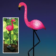 "Solar-Powered Light-Up Flamingo, Item #40176, $34.99    Bright pink tropical flair awaits your garden with our solar-powered light-up flamingo. The pole at the base stakes into the ground while the solar panel with on-off switch captures the power of the sun to light up your flamingo at night. Made from weather-resistant plastic and metal. A fun way to enhance your garden or walkway. Measures 25"" tall with stake."