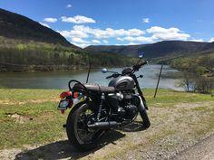 Satteltasche für Harley-Davidson Honda Kawasaki Suzuki Triumph Yamaha 3l schwarz