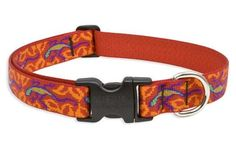 Go Go Gecko Collar/Lead by Lupine