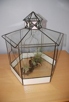 The first thing I made in glass.  A pagoda style terrarium, checking it out for airplants.