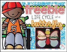 """FREE SCIENCE LESSON - """"FREE Butterfly Life Cycle Craftivity and Writing Response"""" - Go to The Best of Teacher Entrepreneurs for this and hundreds of free lessons. Kindergarten - 3rd Grade  #FreeLesson  #Science  http://www.thebestofteacherentrepreneurs.net/2016/02/free-science-lesson-free-butterfly-life.html"""