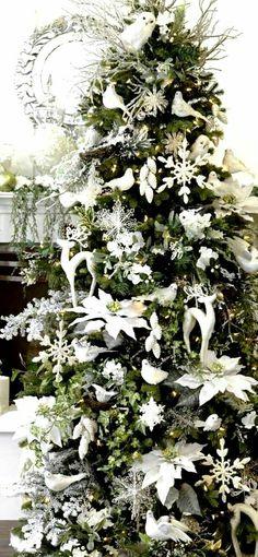 White Christmas Trees Christmas  Merry Christmas Xmas Trees Christmas Tree Poinsettia