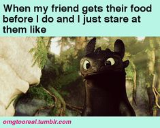 Hahaha, sorry Toothless. At least you're next. lol