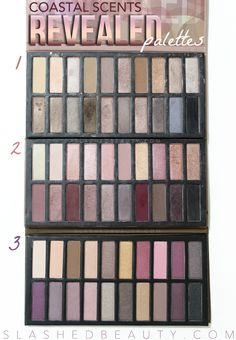REVIEW & SWATCHES: Coastal Scents Revealed 3 Palette | Slashed Beauty
