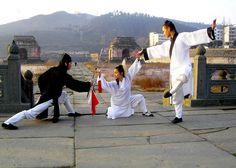Wudang Martial Art