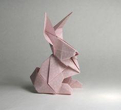 Rabbit | Flickr: Intercambio de fotos
