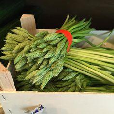 Beautiful wild asparagus @LaFromagerieUK