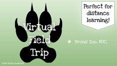Bronx Zoo, Virtual Field Trips, Disney World Parks, San Diego Zoo, Disney California Adventure, Kruger National Park, Hollywood Studios, Great Barrier Reef, Google Classroom