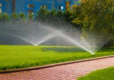 Consider hiring this company to handle maintenance jobs for your lawns and gardens. They offer client-satisfying services including organic lawn weed control, sodding, fertilizing and more. Lawn Sprinklers, Sprinkler System Installation, Sprinkler Repair, Weeds In Lawn, Drip Irrigation System, Lawn Maintenance, Natural Garden, Front Yard Landscaping, Gardens